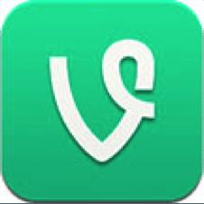 Vine-PaceCo-Blog