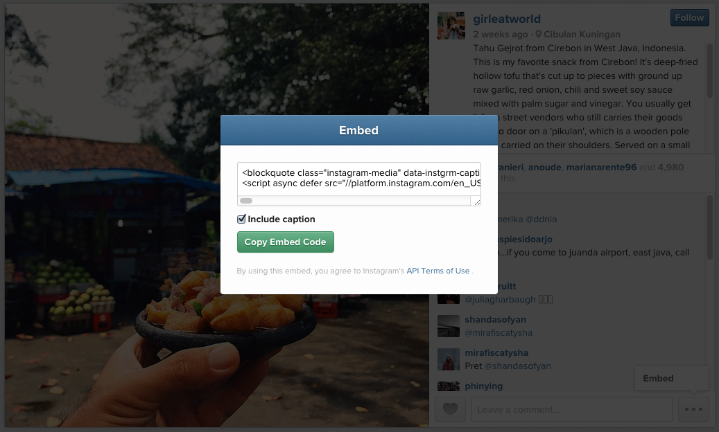 Instagram Embed Code