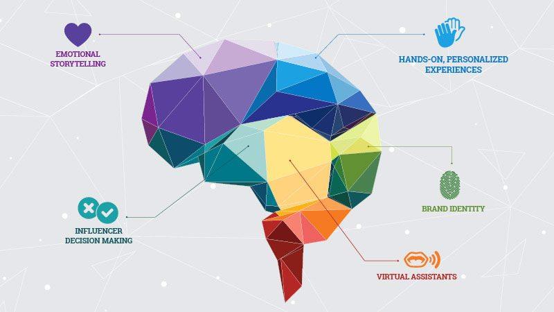new consumer brain 2018