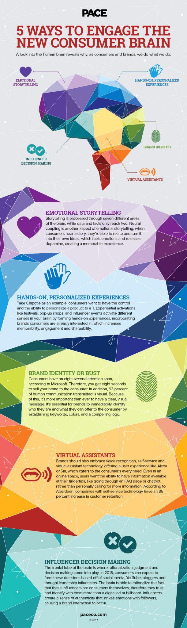 consumer brain